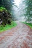 En bana mellan träd i Glendalough Irland royaltyfri bild