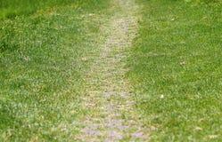 En bana på en grässlätt eller en äng eller ett fält Royaltyfria Bilder