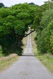 En bana som stiger in i avståndet Royaltyfri Bild