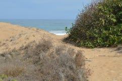 En bana till havet Fotografering för Bildbyråer