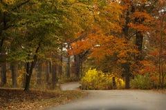En bana till och med nedgången färgar på Morton Arboretum i Lisle, Illinois Arkivbild