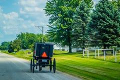 En barnvagnvagn med den ljusa l?g-rullade vagnen i Shipshewana, Indiana royaltyfri bild