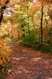 En bas du chemin d'automne Photos libres de droits