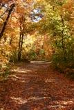 En bas du chemin d'automne Photo stock