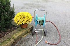 En begreppsbild av en trädgårds- slang - arbeta i trädgården Royaltyfri Fotografi