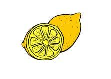 En behagfull illustration av en citron och en halv citron stock illustrationer