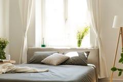 En bekväm säng med grafitsängkläder och kuddar mot ett ljust fönster i en vänlig sovruminre för eco i en hyreshushou arkivbild