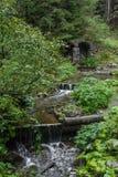En bergström i de Carpathian bergen royaltyfri foto