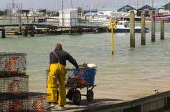 En besättningsman skjuter en barnvagn längs en sväva ponton på hamnen på Warsash i Hampshire, som han hjälper att lasta av en trå Royaltyfri Fotografi