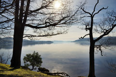 Lake Windermere som inramas av två trees Royaltyfria Foton
