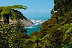 En beskåda till Manukau Heads från regionala Waitakere parkerar royaltyfri foto