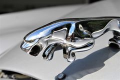 En bild av en Jaguar logo - Bielefeld/Tyskland - 07/23/2017 Royaltyfria Foton