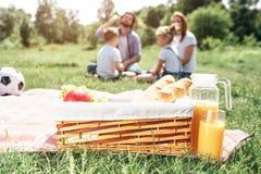 En bild av korgen med frukt- och brödanseende på filten på gräs Det finns en stor krus av orange fruktsaft förutom den royaltyfri bild