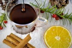 En bild av en vinter dricker - juldrinken Royaltyfri Foto