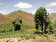 En bild från det Daikondy landskapet Afghanistan Arkivbilder