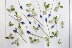 En bild med blommor Arkivfoto