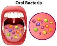 En bild som visar muntliga bakterier vektor illustrationer