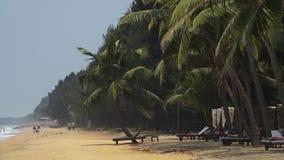 En blåsig dag på stranden stock video