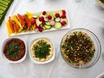 En blandning av arabisk mat samman med grönsaker royaltyfri foto