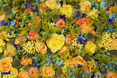 En blandning av härliga dekorativa blommor med rosor Arkivfoton