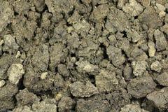 En blandning av jord och sand Royaltyfri Foto
