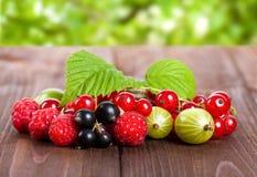 En blandning av mogna bär på en trätabell för livstid sommar fortfarande Hallon krusbär, vinbärnärbild Royaltyfria Foton