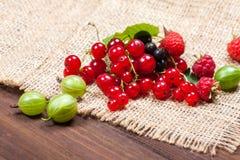 En blandning av mogna bär på en trätabell för livstid sommar fortfarande Hallon krusbär, vinbärnärbild Royaltyfria Bilder