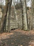 En blick in i den vintriga härligheten av Rocky River Reservation i Cleveland, Ohio, USA Arkivbild