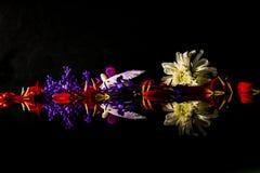 En blom- pil av hopp Royaltyfri Fotografi