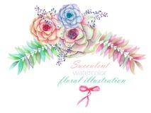 En blom- vattenfärgillustration med suckulenterna, blommorna, sidorna och filialerna, garneringbukett Royaltyfri Fotografi