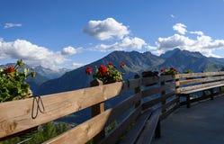 En blomkruka inställd framme av bergen Arkivfoto