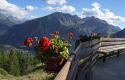 En blomkruka inställd framme av bergen Arkivbilder