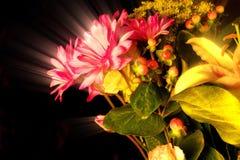 En blommabukett av utsmyckad strålglans Royaltyfria Foton