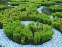 En blomsterrabatt med dekorativa växter Fotografering för Bildbyråer