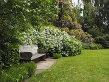 En bois choisissez le banc dans le joli jardin vide Photo libre de droits