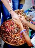 En bois coloré Handcrafted Photo stock