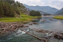 En bois ouvre une session la rivière de montagne coulant le long de peu de canyon Image libre de droits