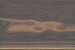 En bois vert de texture en bois de fond, foncé image stock