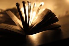 En bok Arkivbild