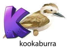 En bokstav K för skrattfågel royaltyfri illustrationer