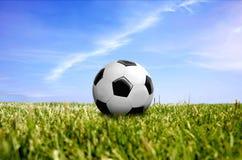 En boll på grönt gräs Royaltyfria Foton