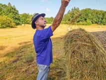 En bonde i en hatt står på en bunt av nytt hö royaltyfria bilder