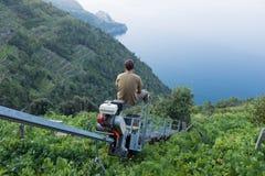 En bonde rider enskeniga järnvägen ner till hans vingård för att skörda druvorna på den Amalfi kusten, Italien arkivbild