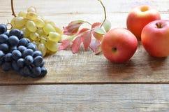 En borste av svarta druvor och vita druvor låter vara red isolerad white för höst begrepp skördgulingblommor nytt organiskt på et Arkivfoton