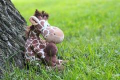en borttappad leksakpäls Royaltyfri Fotografi