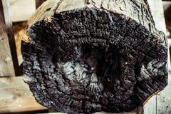 En bränd till kol inloggning som insidan brände fotografering för bildbyråer