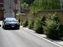 En bred sikt av den nyligen gifta rida bilen royaltyfri fotografi