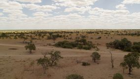 En bred sikt av land med träd och himmel med molnet stock video