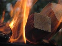 En brinnande orange ljus flamma av brand överväldigade svärtade avsnitt av björken, rökte fyrkantiga journaler royaltyfri bild
