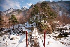 En bro över en ström som följer ett tungt insnöat a Arkivbild